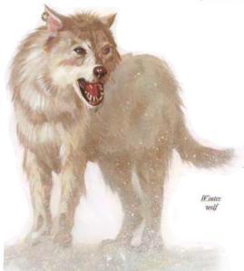 Winter Wolf (1)